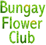 bungay flower club