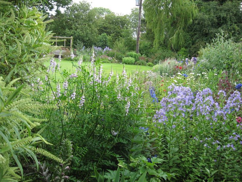 Norfolk Gardens