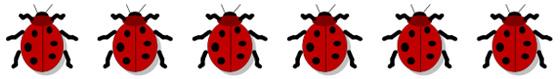 how hill ladybirds