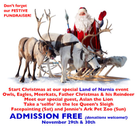 Suffolk Owl Sanctuary Christmas Event 2014