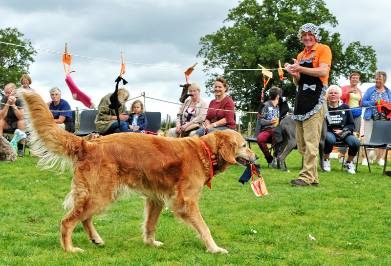 Fairhaven Fun Dog Day