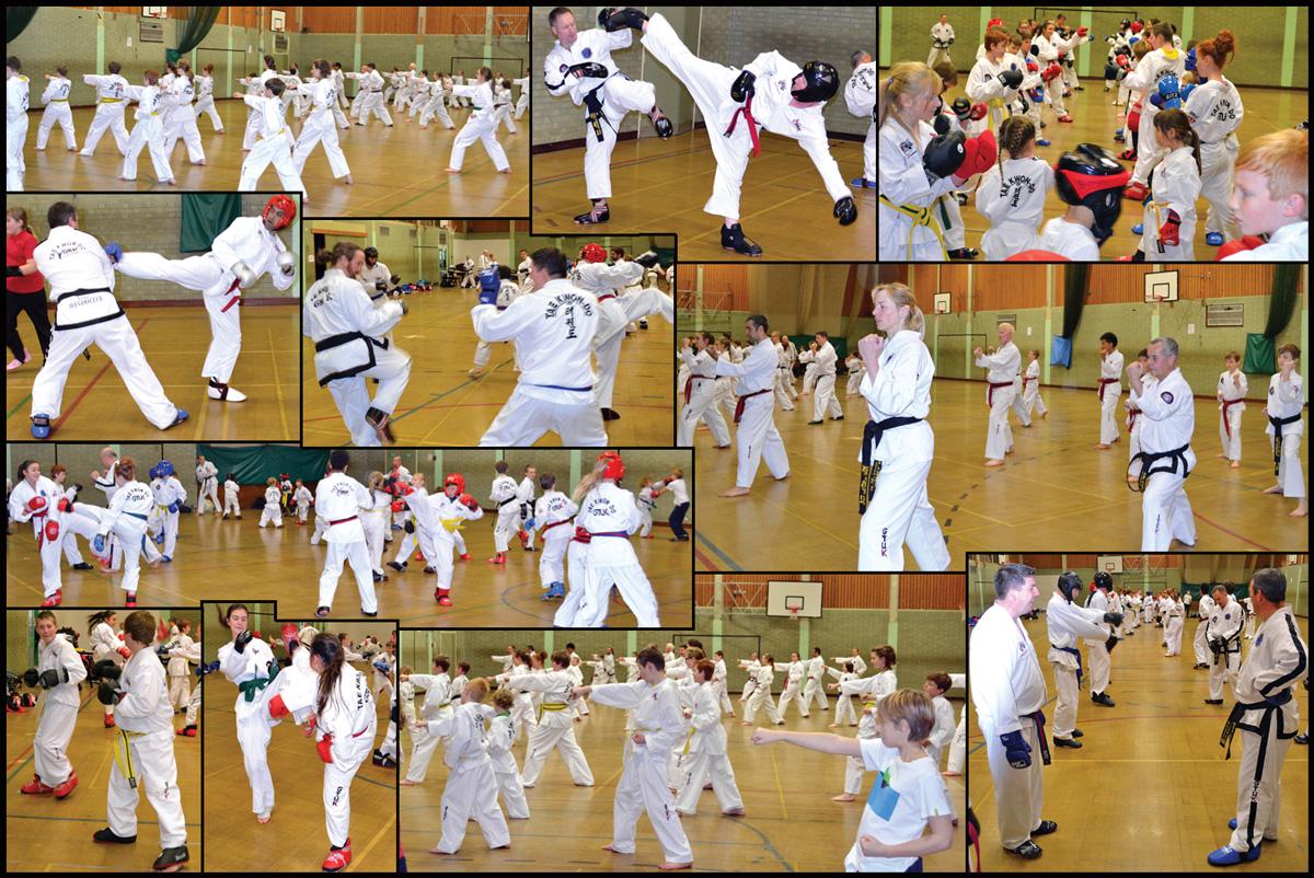 BTKD taekwondo grading