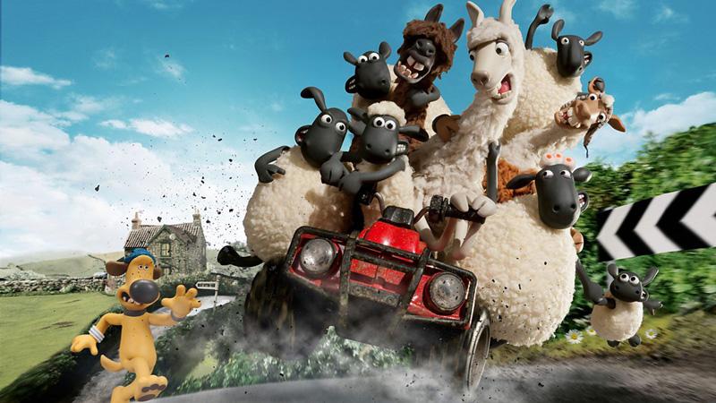 Farmers Llamas