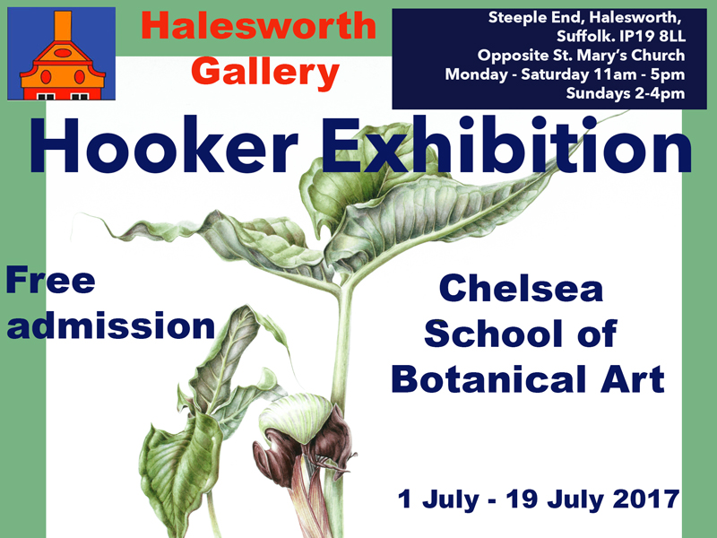 Halesworth Art Gallery