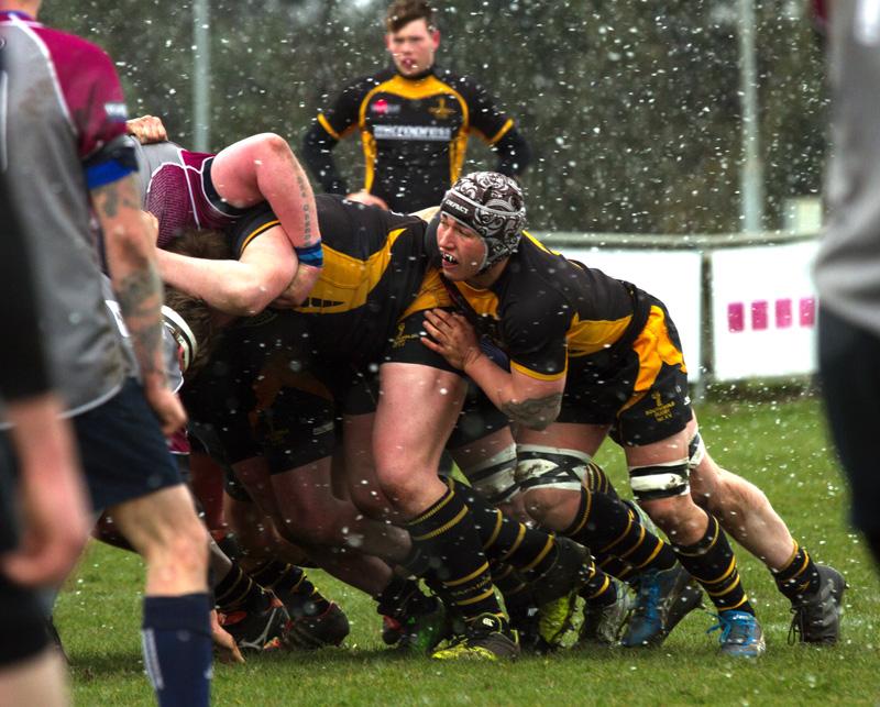 West Norfolk Rugby