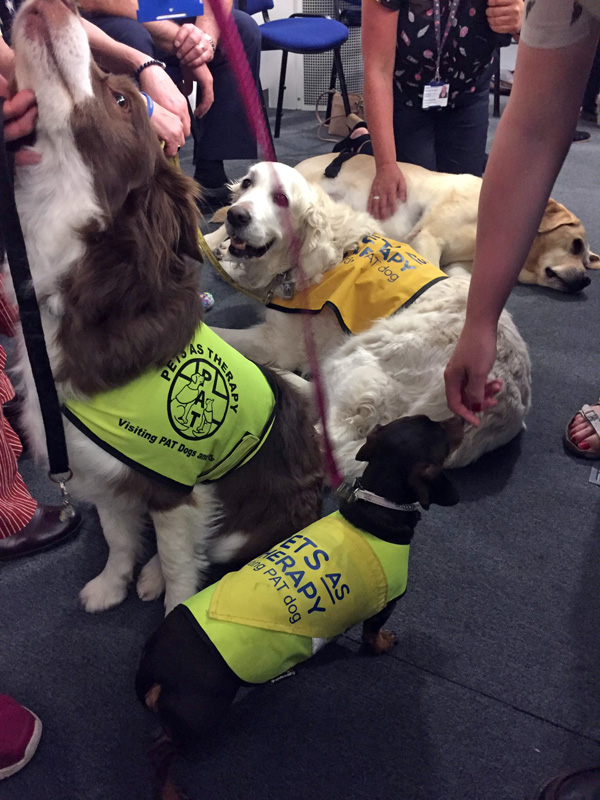 Woof Wellies and Wellbeing