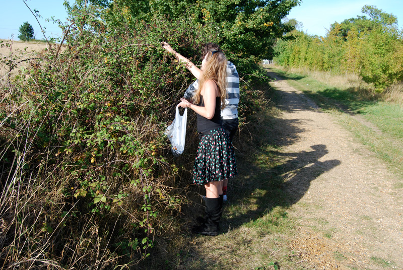 summer fruit picking waveney valley