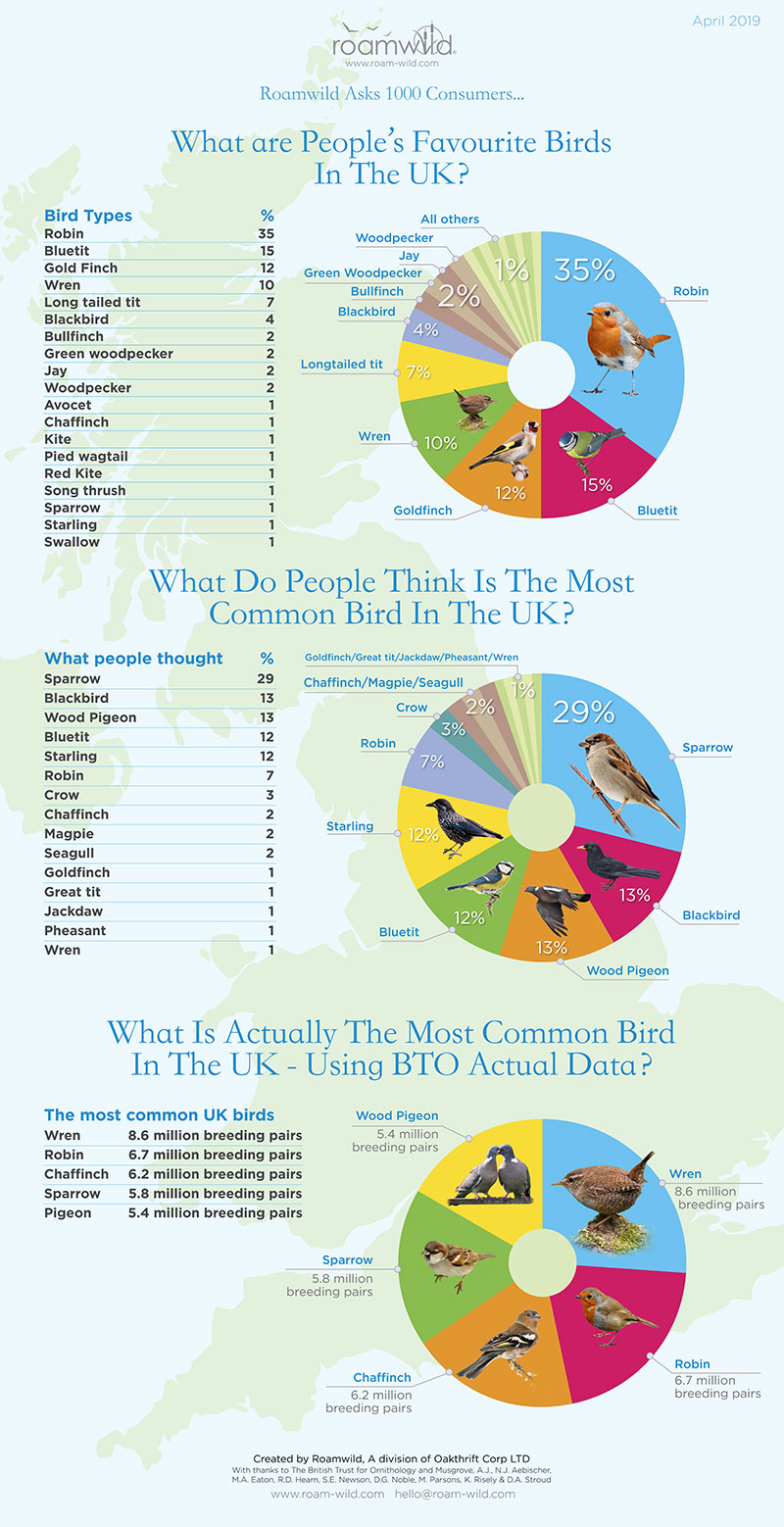 Roamwild UK Wild Bird Data Survey Infographic April 2019