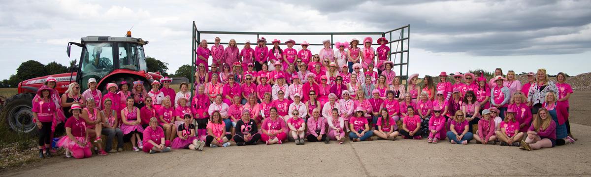 Pink_Ladies