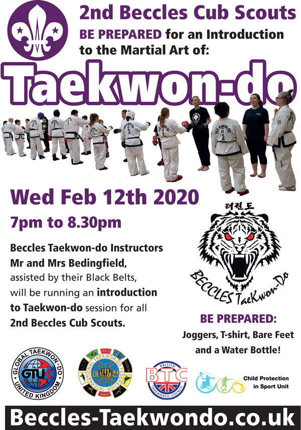 introducing Taekwondo