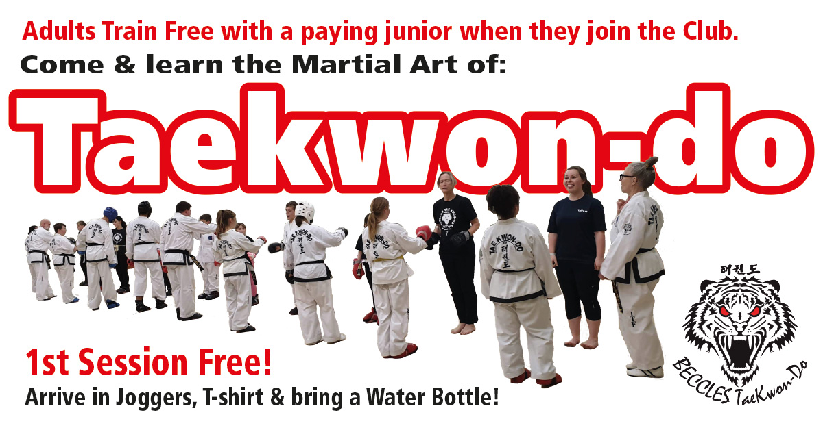 Come and Try Taekwondo