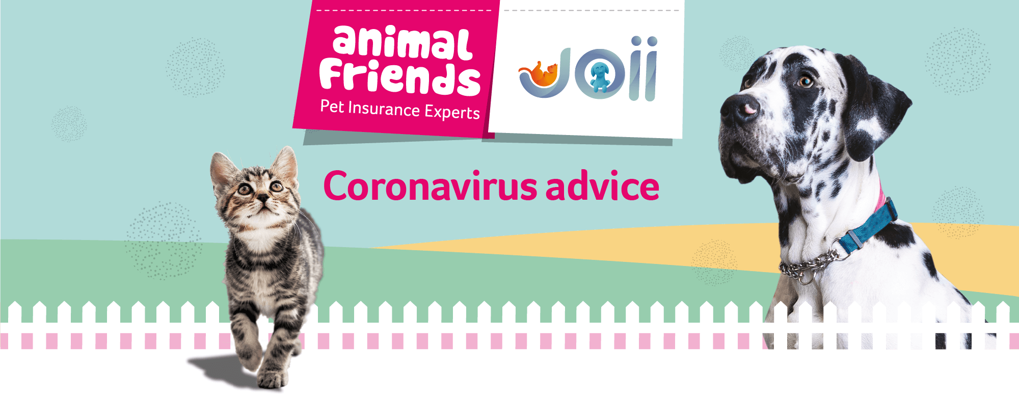 Looking after your pets during the Coronavirus outbreak