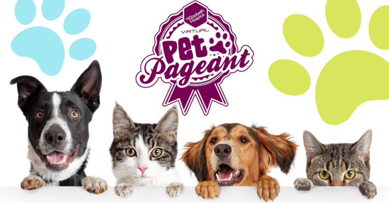 pet pageant
