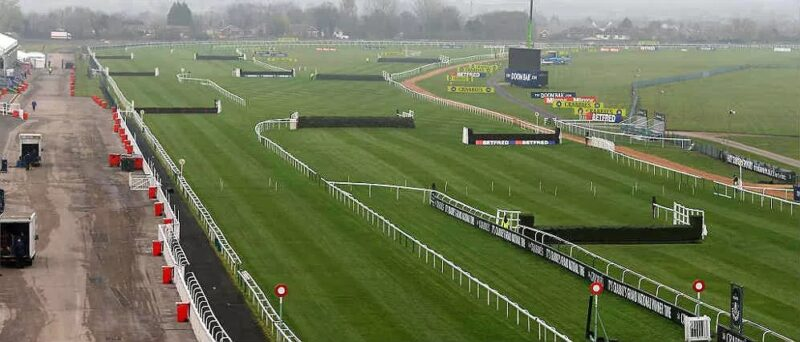 SP Betting On The Grand National